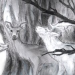 White Stag in the Woods